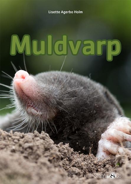 Muldvarp - Maneno - 9671