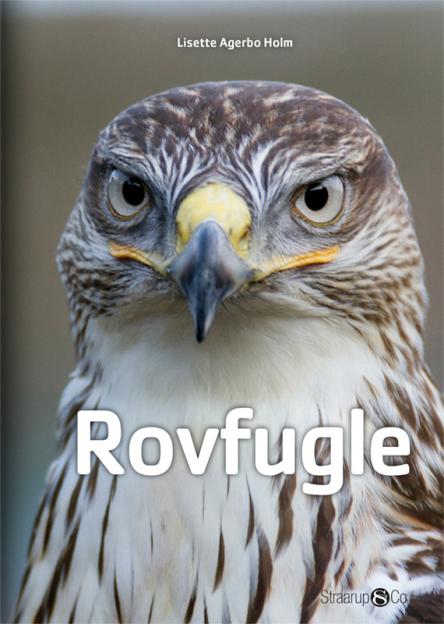 Rovfugle - Maneno - 9673