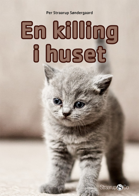 En killing i huset - Maneno
