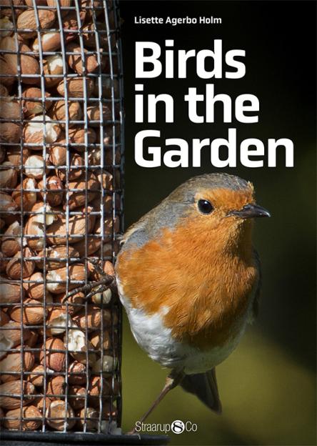 Birds in the Garden - Maneno - 9708
