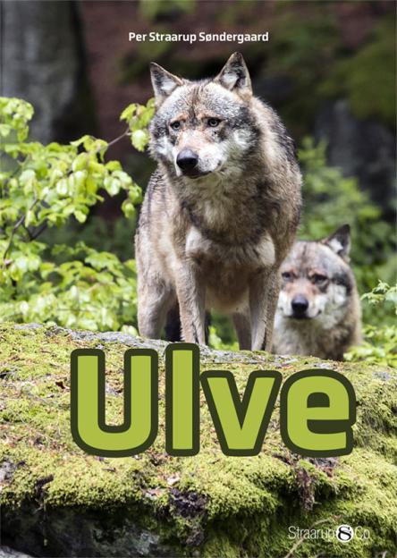 Ulve - Maneno