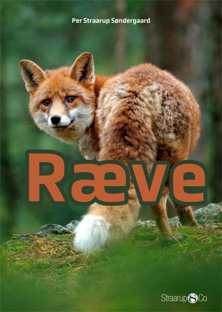 Ræve - Maneno