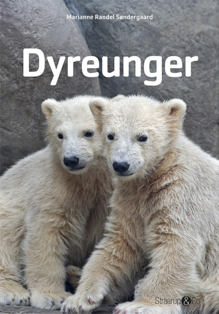 Dyreunger - Maneno