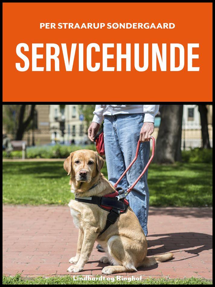 Servicehunde - Maneno